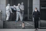 Trung Quốc xác nhận ca tử vong thứ 4 do virus corona, WHO phải họp khẩn cấp