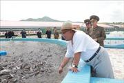 Báo Triều Tiên nhấn mạnh tầm quan trọng của tự lực kinh tế