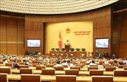 Ngày 22/5, Quốc hội thảo luận dự kiến Chương trình xây dựng luật, pháp lệnh năm 2021