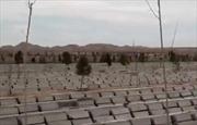 Dịch COVID-19 khiến nghĩa trang tại Iran quá tải