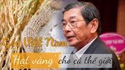 Gạo Việt Nam - 'Hạt vàng' cho cả thế giới