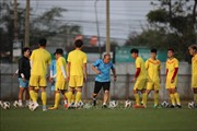 Việt Nam vững vàng Top 15 châu Á trong bảng xếp hạng FIFA