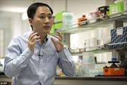 Đồng nghiệp lo lắng nhà khoa học sửa gien người có thể bị tử hình