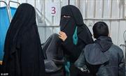 Nga đón con cái của các phần tử khủng bố IS hồi hương
