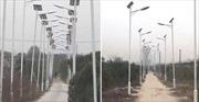 Dân làng tham lam dựng cả nghìn cột đèn cao áp trên con đường 3km để lấy tiền đền bù