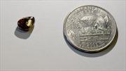 Thầy giáo đi dạo công viên, nhặt được cục kim cương 2,12 carat