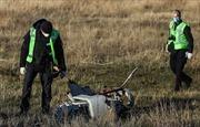Xuất hiện các nhân chứng mới trong vụ máy bay MH17 bị bắn rơi
