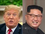 Tổng thống Trump không gặp Chủ tịch Triều Tiên trước bầu cử Mỹ