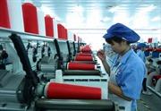 Số lượng đơn vị khu vực kinh tế tăng nhanh hơn khu vực hành chính sự nghiệp