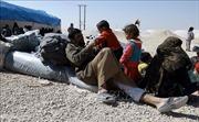 'Chuyến xe hy vọng' cho các trẻ em tại Iraq