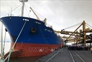 TKV rót hơn 40.000 tấn than trong ngày đầu năm mới 2019