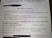 Sớm làm rõ việc 'kêu cứu' của tập thể tiếp viên Vietnam Airlines