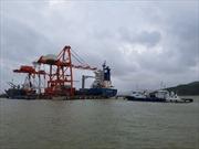 Tổng công ty Hàng hải Việt Nam lãi 365 tỷ đồng sau cổ phần hóa