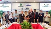 KPMG trở thành đơn vị tư vấn xây dựng nền tảng hoạt động cho công ty Phú Long