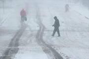 Mỹ hủy 1.240 chuyến bay vì bão tuyết có sức gió 80km/h