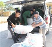 Liên tiếp bắt giữ 3 vụ vận chuyển hàng lậu ở biên giới tỉnh Quảng Trị