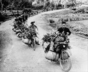 Tri ân những đóng góp to lớn của lực lượng dân công hỏa tuyến