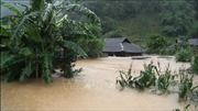 Sơn La: Một trường hợp tử vong, hàng chục nhà dân bị ngập sâu do mưa lũ