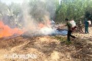 Nguy cơ cháy rừng ở Đồng Nai ở mức cực kỳ nguy hiểm