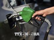 Giá xăng E5 RON 92 giảm 218 đồng/lít