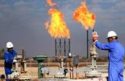 Giá dầu WTI và dầu Brent đều giảm trong tuần qua