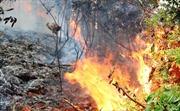 Đám cháy thực bì lan rộng, phong tỏa tuyến đường đèo Prenn để dập lửa