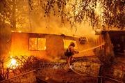 Cháy rừng kinh hoàng ở California năm 2018 là do sự cố đường dây truyền tải điện