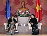 Chủ tịch Quốc hội Nguyễn Thị Kim Ngân tiếp Phó Chủ tịch Nghị viện châu Âu
