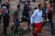Một người Palestine thiệt mạng tại Dải Gaza