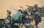 Xóa sổ hoàn toàn Trung tâm chỉ huy IS ở Diyala, Iraq