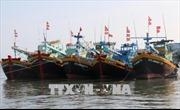Đẩy nhanh tiến độ lắp đặt thiết bị giám sát hành trình cho tàu cá