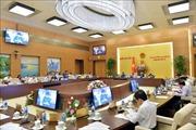 Điều động, phê chuẩn nhân sự Hội đồng Dân tộc và Ủy ban Tư pháp của Quốc hội