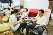 Hàng ngàn nhân viên THACO hiến máu nhân đạo