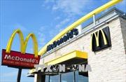 395 người bị nhiễm khuẩn đường ruột do salad của McDonald's