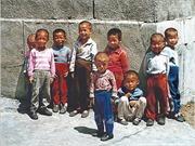Liên hợp quốc tạo điều kiện cho UNICEF hỗ trợ nhân đạo tại Triều Tiên