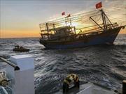 Gỡ lưới quấn quanh tàu cá bị chìm tìm 9 thuyền viên mất tích