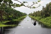 Giải pháp KHCN ứng phó biến đổi khí hậu - Bài 4: Quy hoạch Đồng Tháp Mười thành vùng trữ nước ngọt