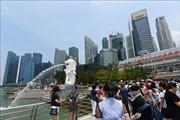 Khu vực bán lẻ Singapore ứng dụng trí tuệ nhân tạo trong kinh doanh
