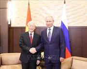Tổng Bí thư Nguyễn Phú Trọng hội đàm với Tổng thống Nga Vladimir Putin