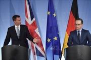 Đức bất đồng với Anh và Pháp vì lệnh cấm xuất khẩu vũ khí cho Saudi Arabia