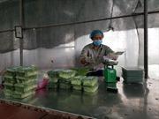 Hội nghị kết nối, xúc tiến thương mại tiêu thụ nông sản an toàn thành phố Hà Nội năm 2019