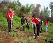 SeABank trao tặng 74.400 cây xanh hồi sinh núi Hồng Lĩnh- Hà Tĩnh