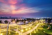 Thương hiệu Việt – 'sự trỗi dậy của rồng' vươn tầm quốc tế