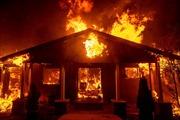 Vì sao cháy rừng California trở thành 'chuyện thường ngày ở huyện'?