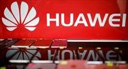 Liệt Huawei vào danh sách đen, Tổng thống Trump đang thực sự trừng phạt ai?