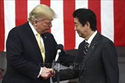 Thế giới tuần qua: Mỹ-Nhật củng cố liên minh; Đối thoại Shangri-la 'nóng' giữa thương chiến