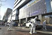 Rà soát số lao động đang làm việc tại Hàn Quốc để có phương án phòng dịch COVID-19
