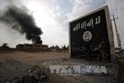 IS hành quyết một phụ nữ Syria 65 tuổi