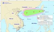 Chủ động ứng phó với áp thấp nhiệt đới có khả năng đi vào biển Đông