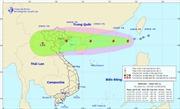 Áp thấp nhiệt đới đã mạnh lên thành bão số 5